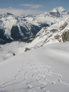 Ski tracks headed for camp on the Argentine Glacier Trip